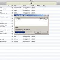 iTunes update downloaded in less than a minute, averaging around 1.3mbs DL