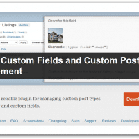 custom-fields-custom-post-types
