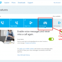 Click the slider to disable voicemail