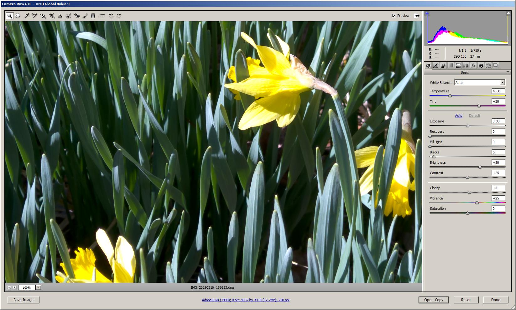 Nokia 9 PureView camera sample photos vs  Gcam vs  Pixel 3